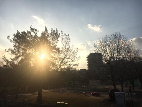 朝は来る 冬の空